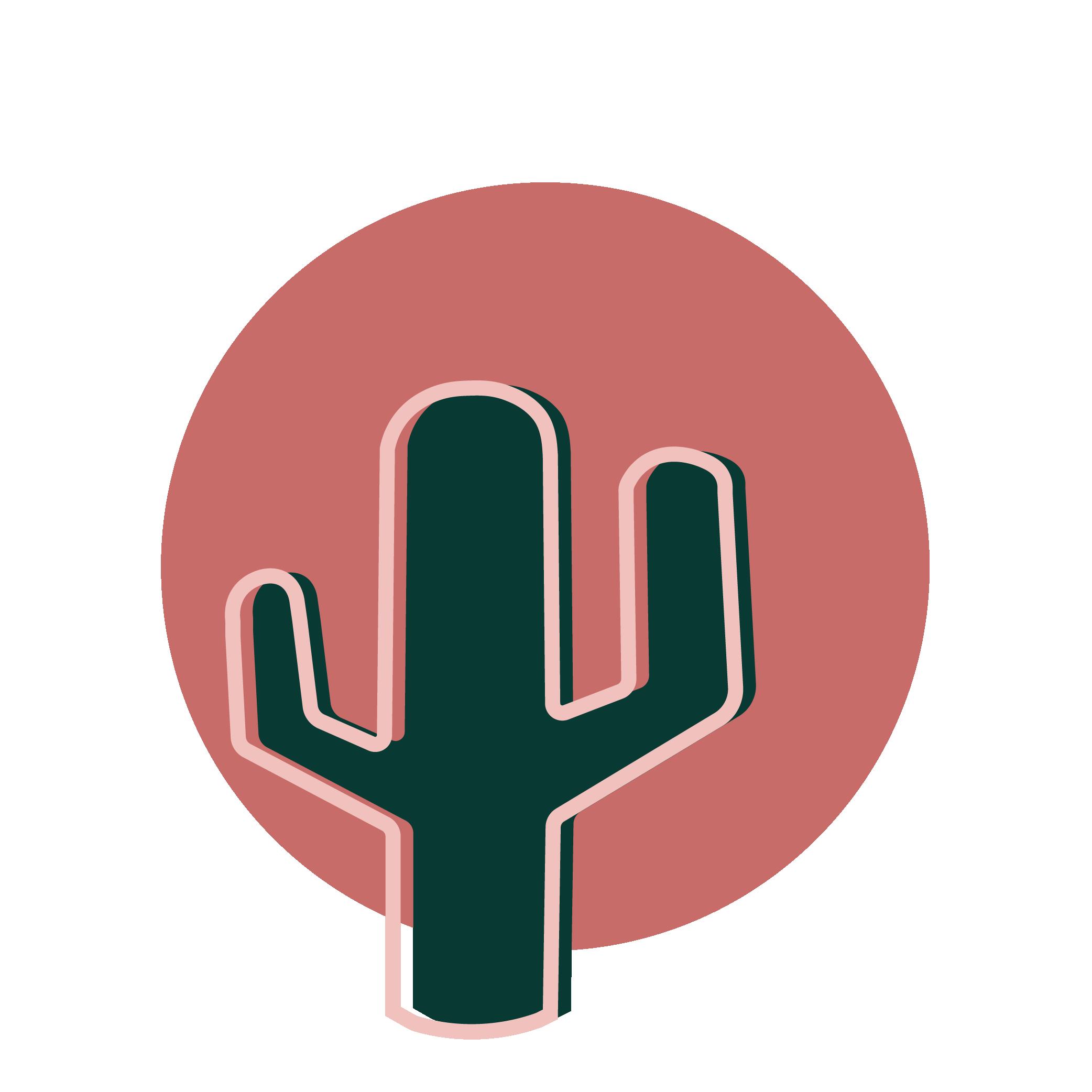 Graine de cactus
